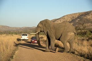 Autovermietung Klerksdorp, Südafrika