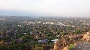 Autovermietung Rosebank, Südafrika