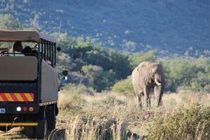 Autovermietung Vryburg, Südafrika